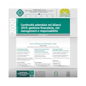 Continuità aziendale nei bilanci 2019: gestione finanziaria, risk management e responsabilità
