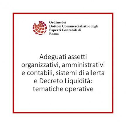 Adeguati assetti organizzativi, amministrativi e contabili, sistemi di allerta e descreto liquidità: tematiche operative